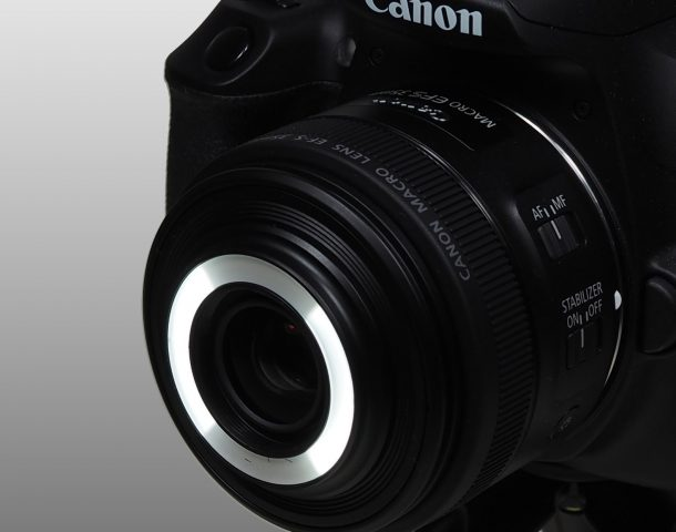 Canon Makro EF-S 35mm F2.8 LED Beide