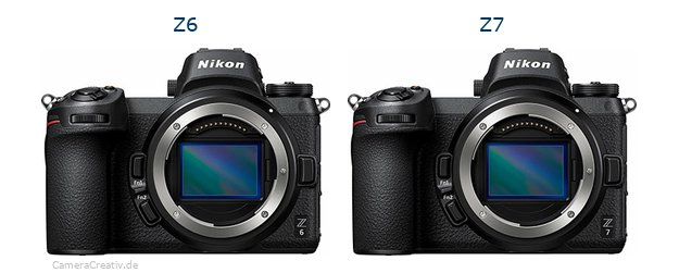 Differences Nikon Z6 and Z7 - Which one is better?