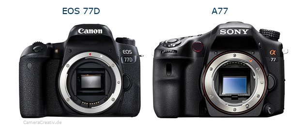 Canon eos 77d oder Sony a77