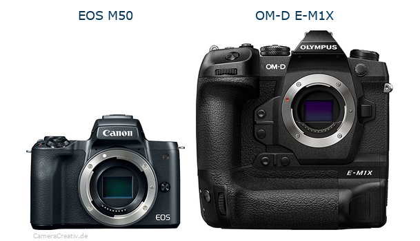 Canon eos m50oderOlympus om d e m1x