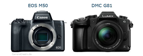 Canon eos m50 vs Panasonic dmc g 81