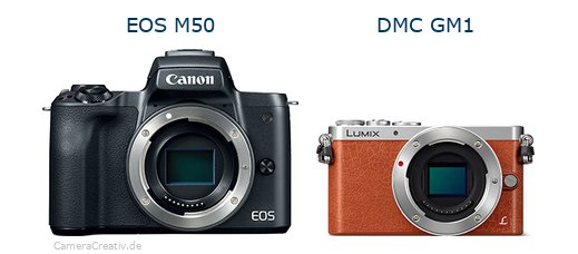 Canon eos m50 vs Panasonic dmc gm 1
