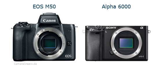 EOS M50 vs Alpha A6000 - Side by side