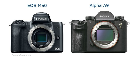Canon eos m50 vs Sony alpha a9