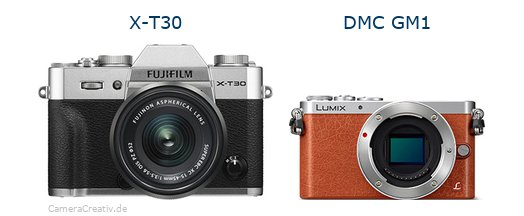 Fujifilm x t30 vs Panasonic dmc gm 1