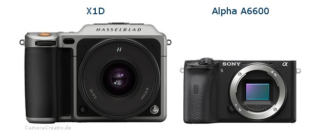 Hasselblad x1d vs Sony a6600