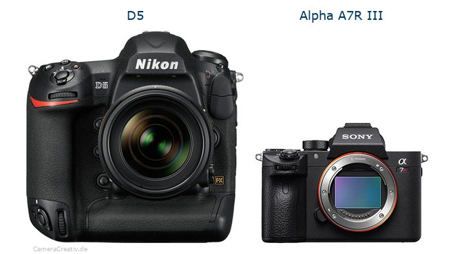 Comparison: Nikon D5 vs Sony Alpha A7R III | CameraCreativ com