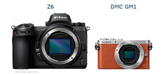 Nikon z6 vs Panasonic dmc gm 1