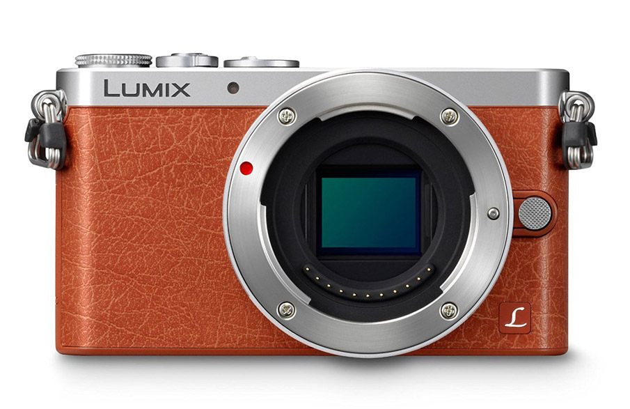 panasonic dmc gm 1
