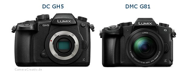Panasonic dc gh 5 vs Panasonic dmc g 81