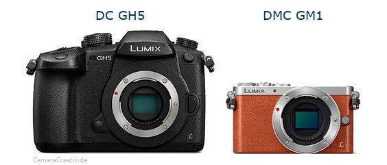 Panasonic dc gh 5 vs Panasonic dmc gm 1