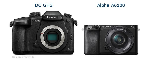 Panasonic dc gh 5 vs Sony a6100