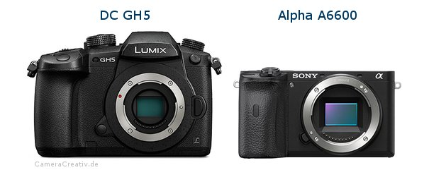 Panasonic dc gh 5 vs Sony a6600