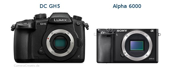 Panasonic dc gh 5 vs Sony alpha 6000