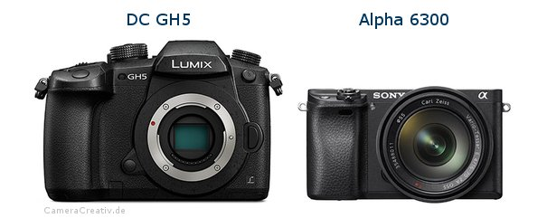 Panasonic dc gh 5 vs Sony alpha 6300