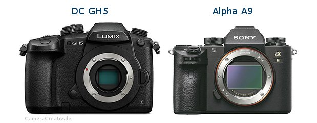Panasonic dc gh 5 vs Sony alpha a9