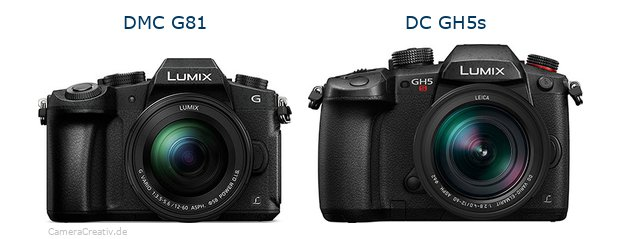 Panasonic dmc g 81 vs Panasonic dc gh5s