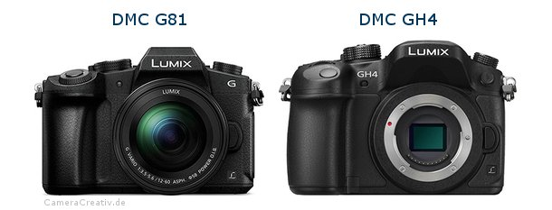 Panasonic dmc g 81 vs Panasonic dmc gh 4