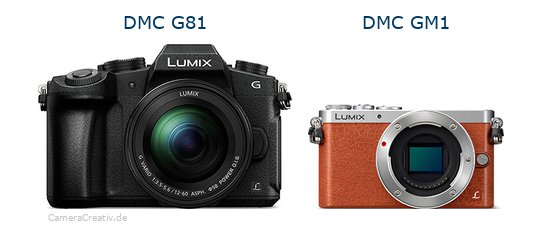 Panasonic dmc g 81 vs Panasonic dmc gm 1