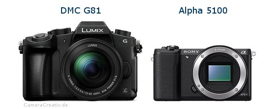 Panasonic dmc g 81 vs Sony alpha 5100