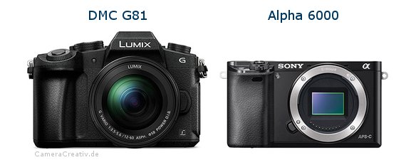 Panasonic dmc g 81 vs Sony alpha 6000