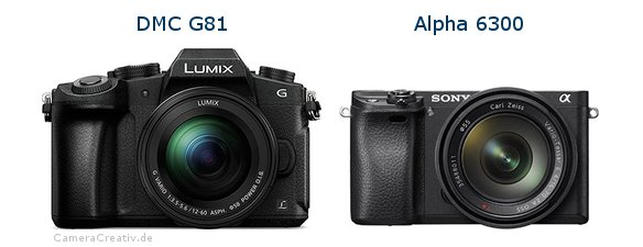 Panasonic dmc g 81 vs Sony alpha 6300