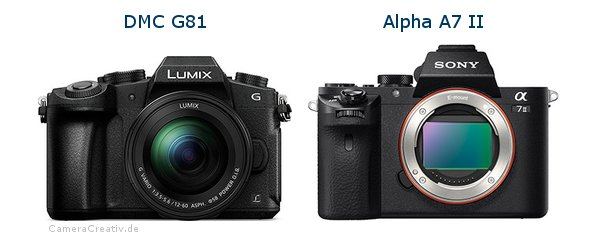 Panasonic dmc g 81 vs Sony alpha a7 ii