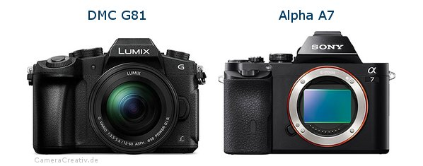 Panasonic dmc g 81 vs Sony alpha a7