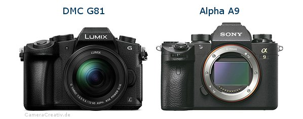 Panasonic dmc g 81 vs Sony alpha a9
