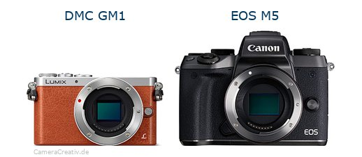 Panasonic dmc gm 1 vs Canon eos m5
