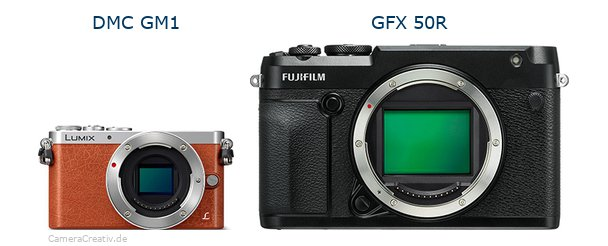 Panasonic dmc gm 1 vs Fujifilm gfx 50r