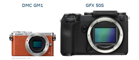 Panasonic dmc gm 1 vs Fujifilm gfx 50s