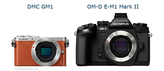 Panasonic dmc gm 1 vs Olympus om d e m1 mark ii