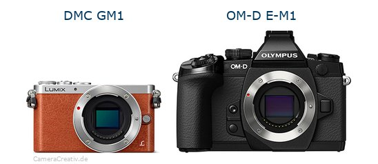 Panasonic dmc gm 1 vs Olympus om d e m1