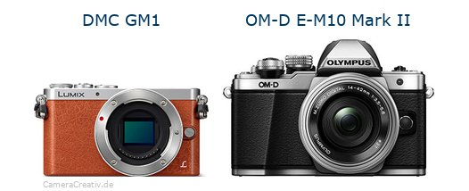 Panasonic dmc gm 1 vs Olympus om d e m10 mark ii