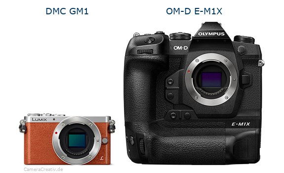 Panasonic dmc gm 1 vs Olympus om d e m1x
