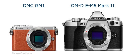 Panasonic dmc gm 1 vs Olympus om d e m5 mark ii