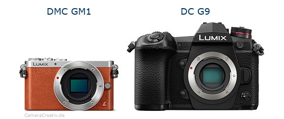 Panasonic dmc gm 1 vs Panasonic dc g9