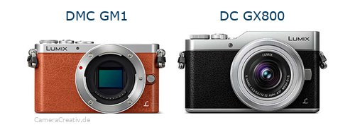 Panasonic dmc gm 1 vs Panasonic dc gx 800