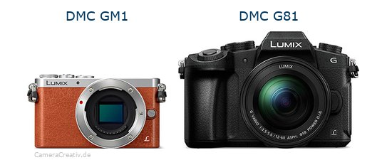 Panasonic dmc gm 1 vs Panasonic dmc g 81