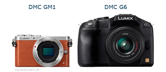 Panasonic dmc gm 1 vs Panasonic dmc g6