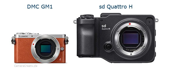 Panasonic dmc gm 1 vs Sigma sd quattro h