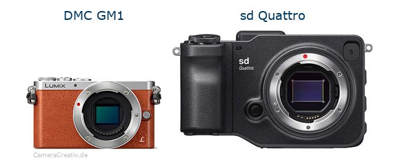 Panasonic dmc gm 1 vs Sigma sd quattro