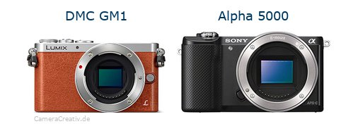 Panasonic dmc gm 1 vs Sony alpha 5000