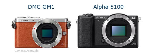 Panasonic dmc gm 1 vs Sony alpha 5100