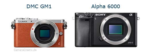 Panasonic dmc gm 1 vs Sony alpha 6000