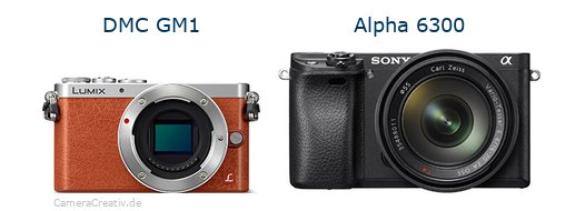 Panasonic dmc gm 1 vs Sony alpha 6300