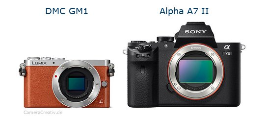 Panasonic dmc gm 1 vs Sony alpha a7 ii