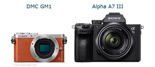 Panasonic dmc gm 1 vs Sony alpha a7 iii