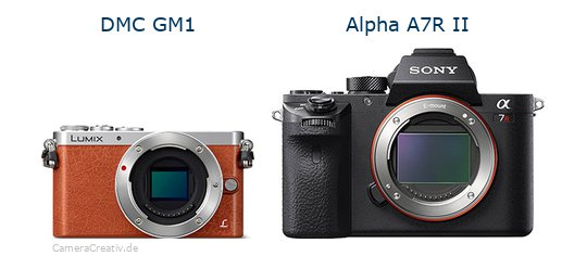 Panasonic dmc gm 1 vs Sony alpha a7r ii